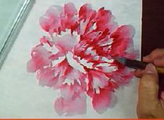 国画牡丹视频教程:点撮法画牡丹