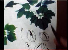 视频:国画牡丹技法(一)_牡丹叶子的画法
