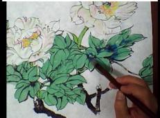 视频:国画牡丹技法(三)