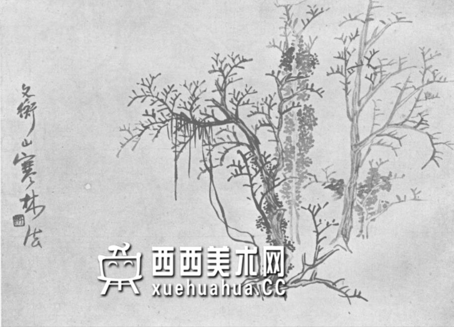 怎么画树?中国画树的画法资料教程(24)