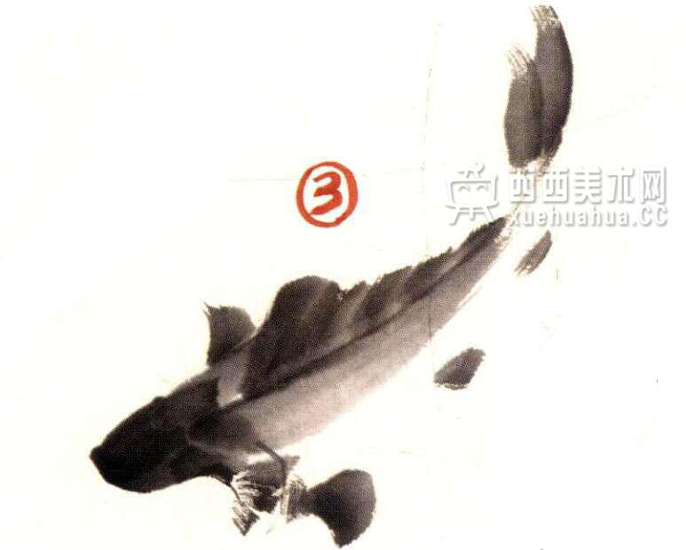 国画教程_水墨画鲤鱼的画法步骤(3)