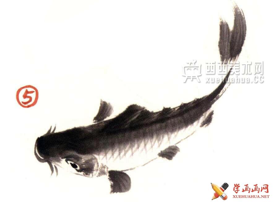 国画教程_水墨画鲤鱼的画法步骤(5)
