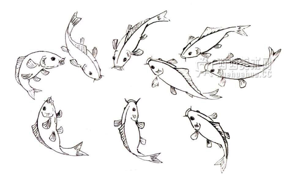 国画教程_水墨画鲤鱼的画法步骤(6)