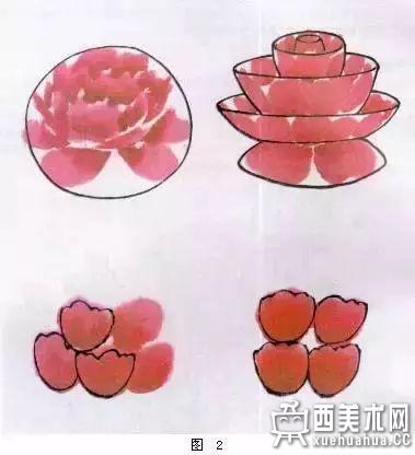 国画牡丹画法详解(2)