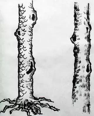 国画入门_山水画中树木的分类及画法(4)