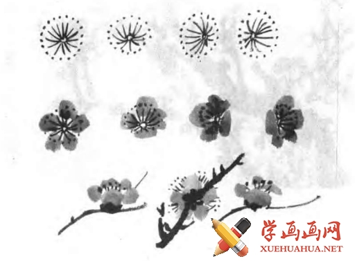 中国画写意梅花的画法(5)