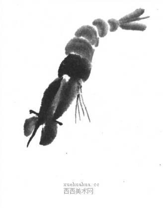 国画虾怎么画?水墨画虾的画法步骤教学(11)