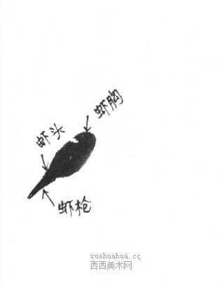国画虾怎么画?水墨画虾的画法步骤教学(1)