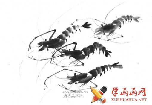 国画虾怎么画?水墨画虾的画法步骤教学(18)