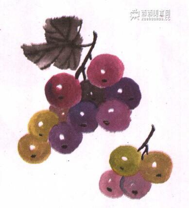 儿童国画教程:葡萄的画法(4)