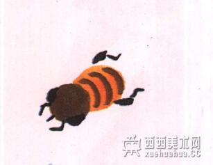 国画蜜蜂的儿童画画法教程(4)