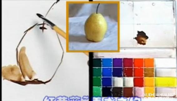 水粉画静物单体视频教程-怎么画梨