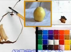 水粉画单体静物教程-梨的画法