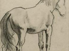 徐悲鸿素描《马》4.jpg