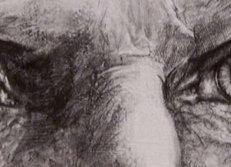 逼真的铅笔画素描眼睛画法图片 (32).jpg