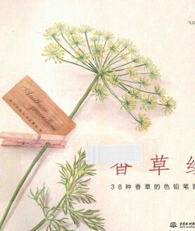彩铅画教程_《38种香草的色铅笔图绘》