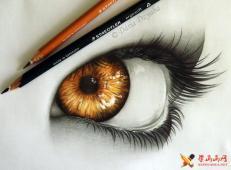 一组关于眼睛的彩铅、铅笔画图片欣赏