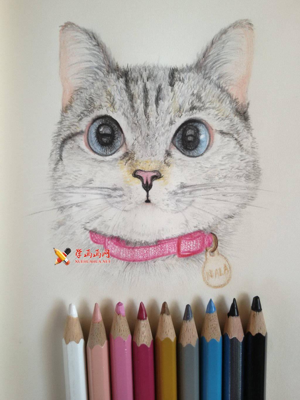 彩铅手绘 图片格式