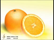 ps鼠绘教程:橙子的画法