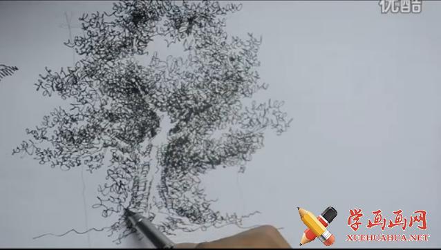 钢笔画单体视频教程:怎么画树(1)