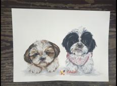水彩画狗狗图片欣赏