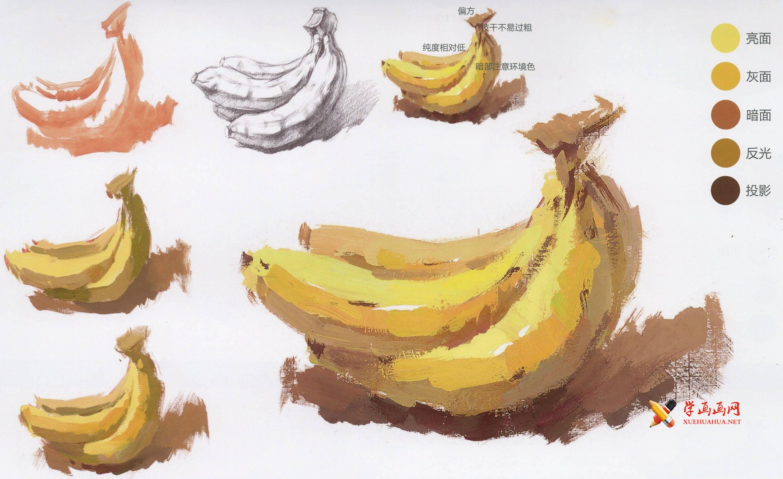 水粉画香蕉的画法单体步骤图解(1)