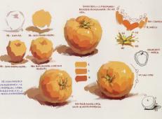 水粉画西红柿的画法单体步骤详解
