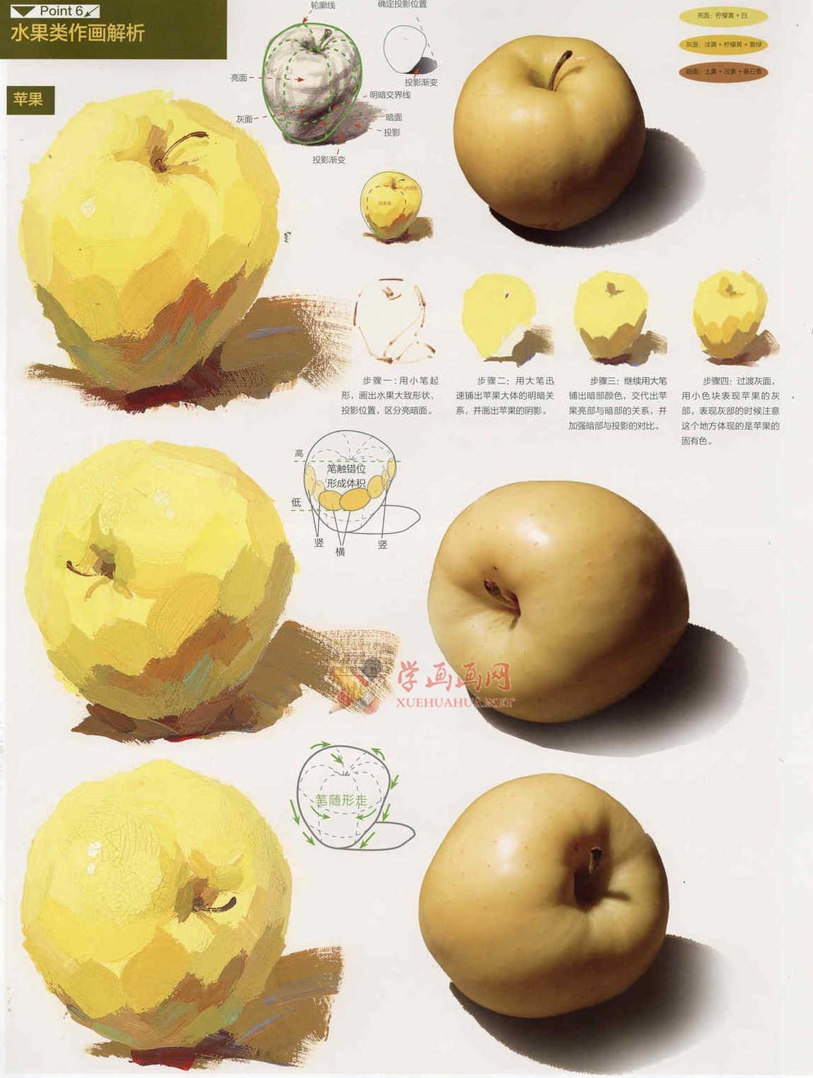 水粉画单体静物:苹果的画法图解及临摹高清范画图片(4)