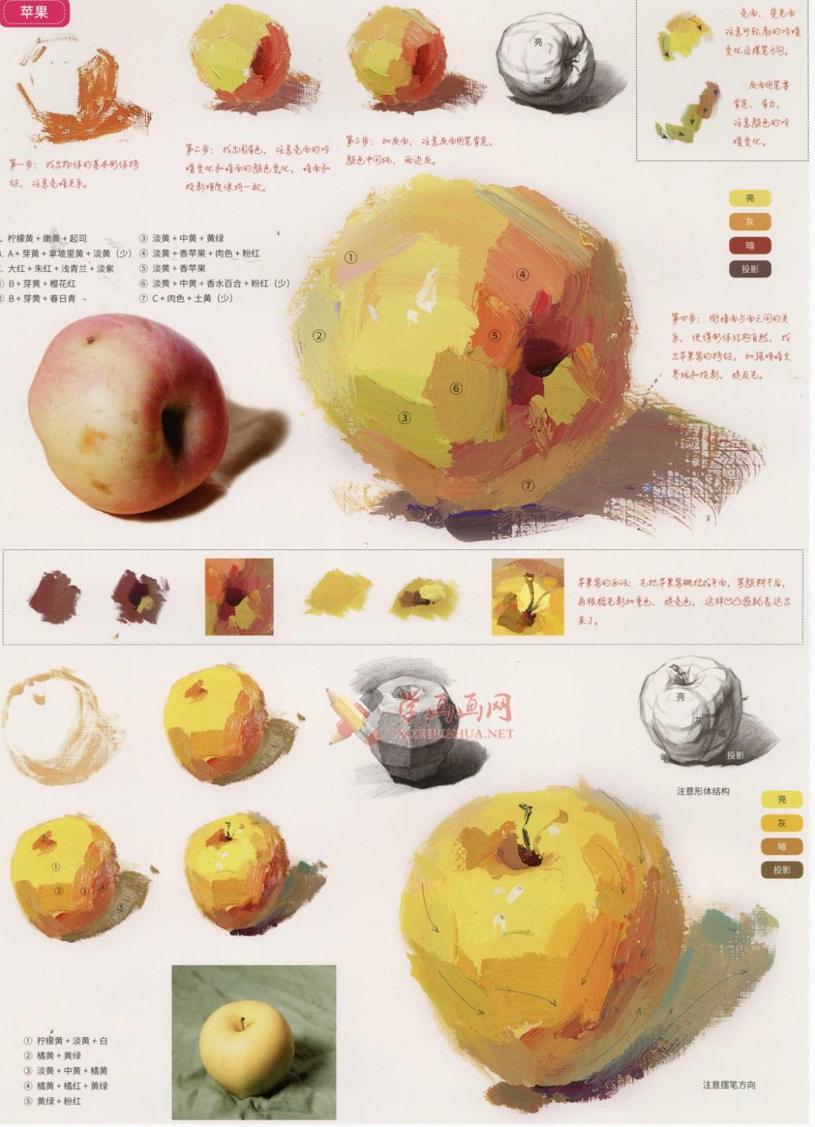 水粉画单体静物:苹果的画法图解及临摹高清范画图片(3)