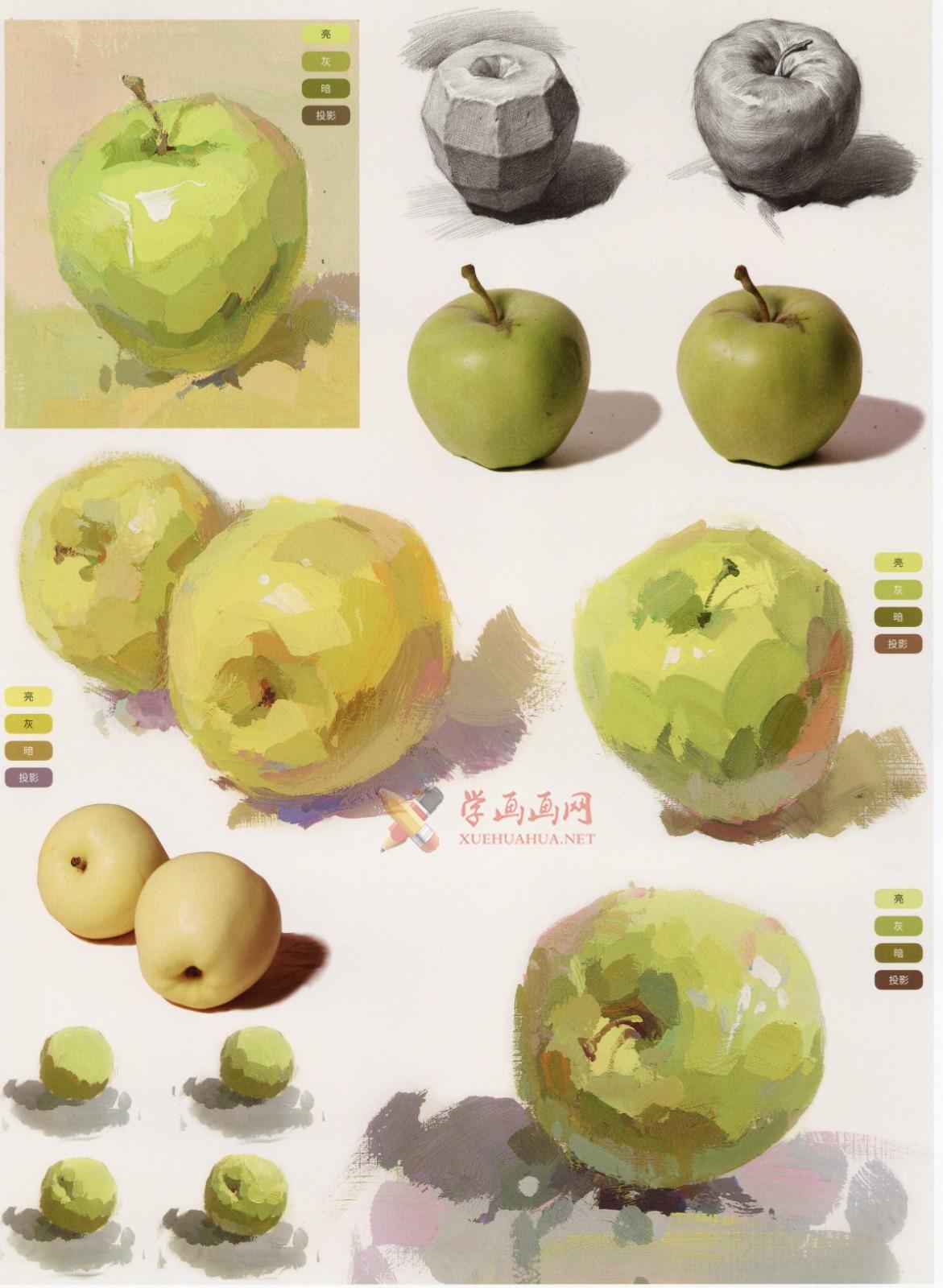 水粉画单体静物:苹果的画法图解及临摹高清范画图片(5)