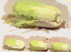怎么画大白菜?水粉画单体入门教程:大白菜的画法图解及高清范画临摹图片素材