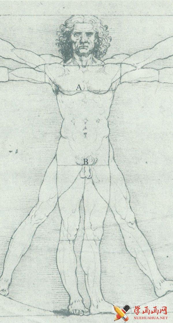 维特鲁威人图片(2)