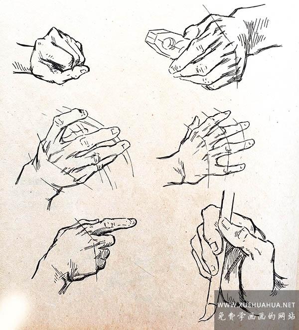 素描手的画法:掌心与手背的绘画技巧