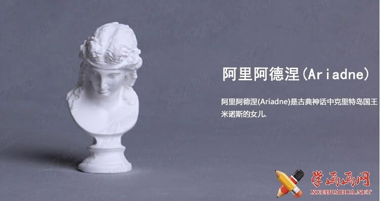 石膏像名称大全(12)