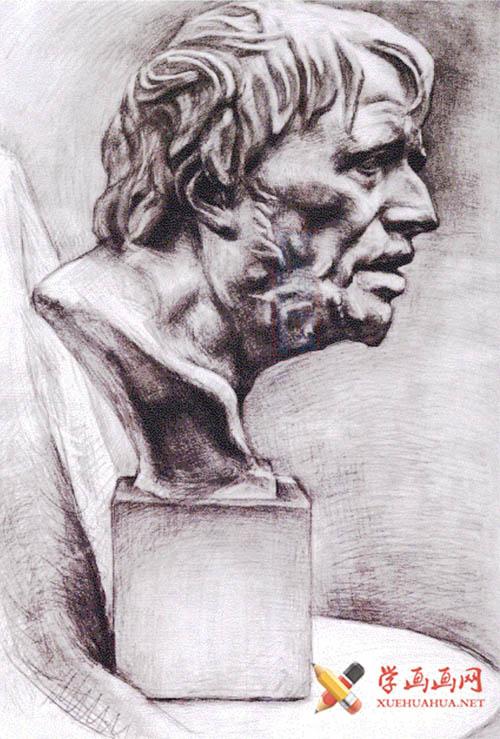 脸部结构石膏素描