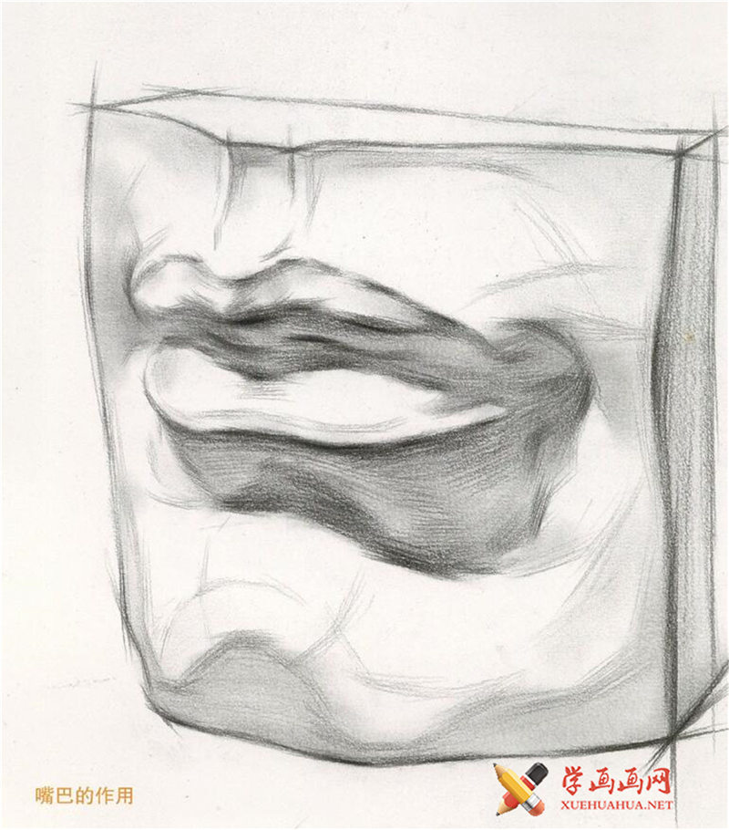 素描石膏像嘴的画法步骤图解(4)