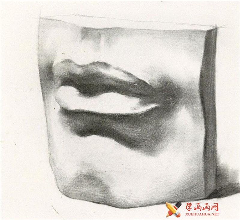 素描石膏像嘴的画法步骤图解(5)