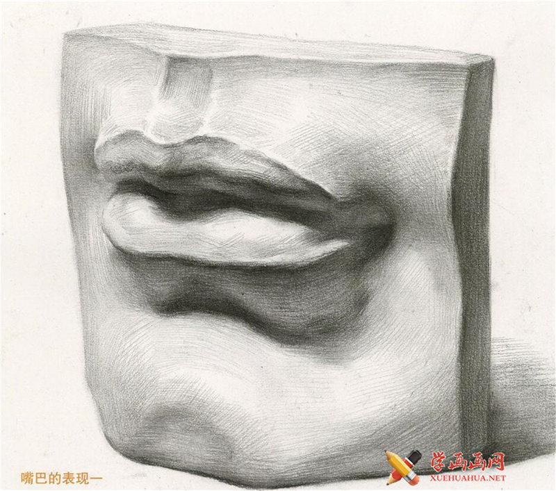 素描石膏像嘴的画法步骤图解(6)