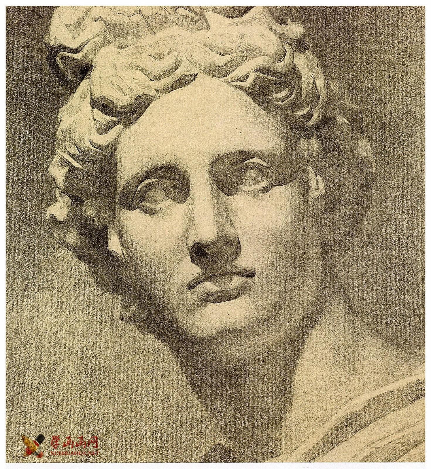 阿波罗素描石膏像优秀范画图片欣赏(2)