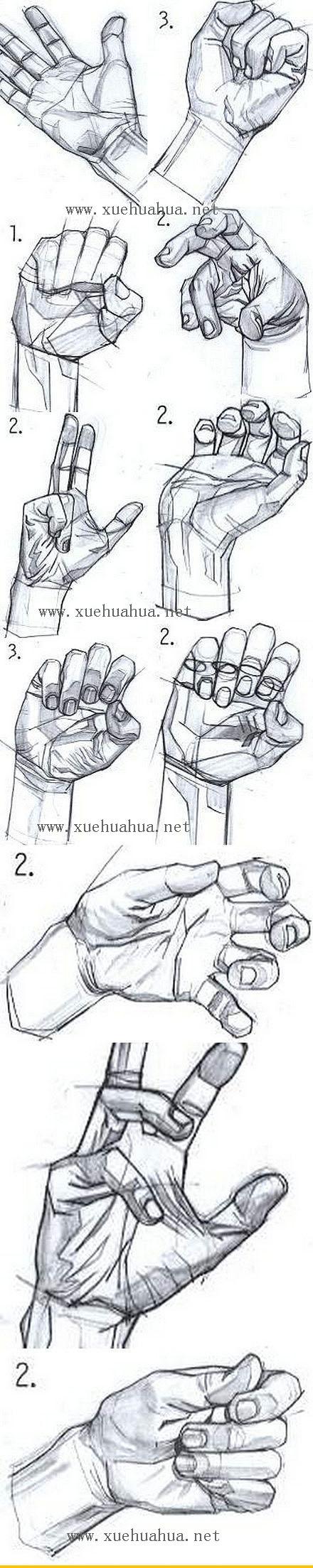 手的姿态画法