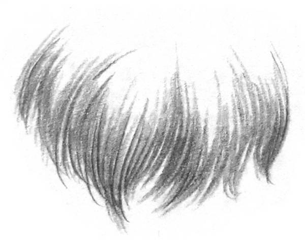 素描猫咪的画法(1)