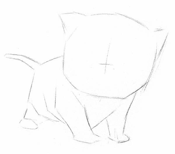 素描猫咪的画法(4)