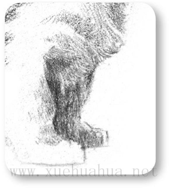 动物素描_素描小狗的画法