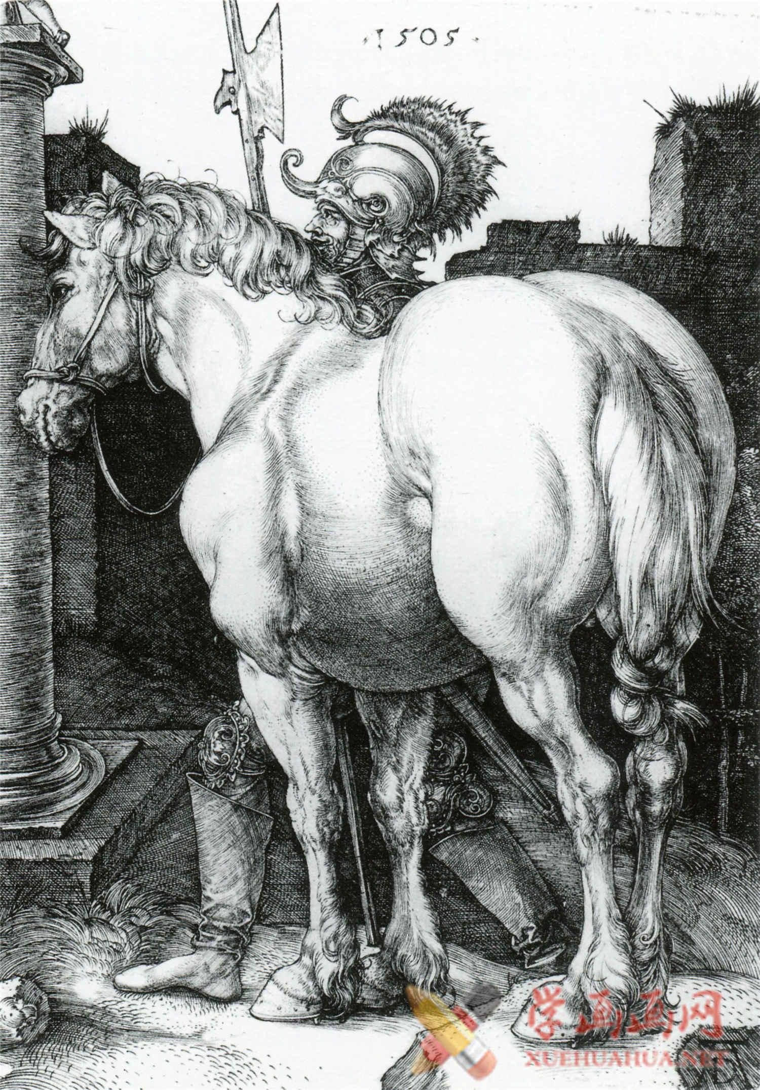 丢勒高清素描画图片《素描动物篇》欣赏(4)