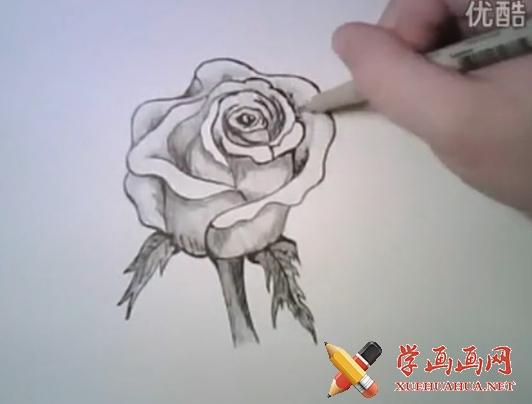 玫瑰花铅笔画法(1)