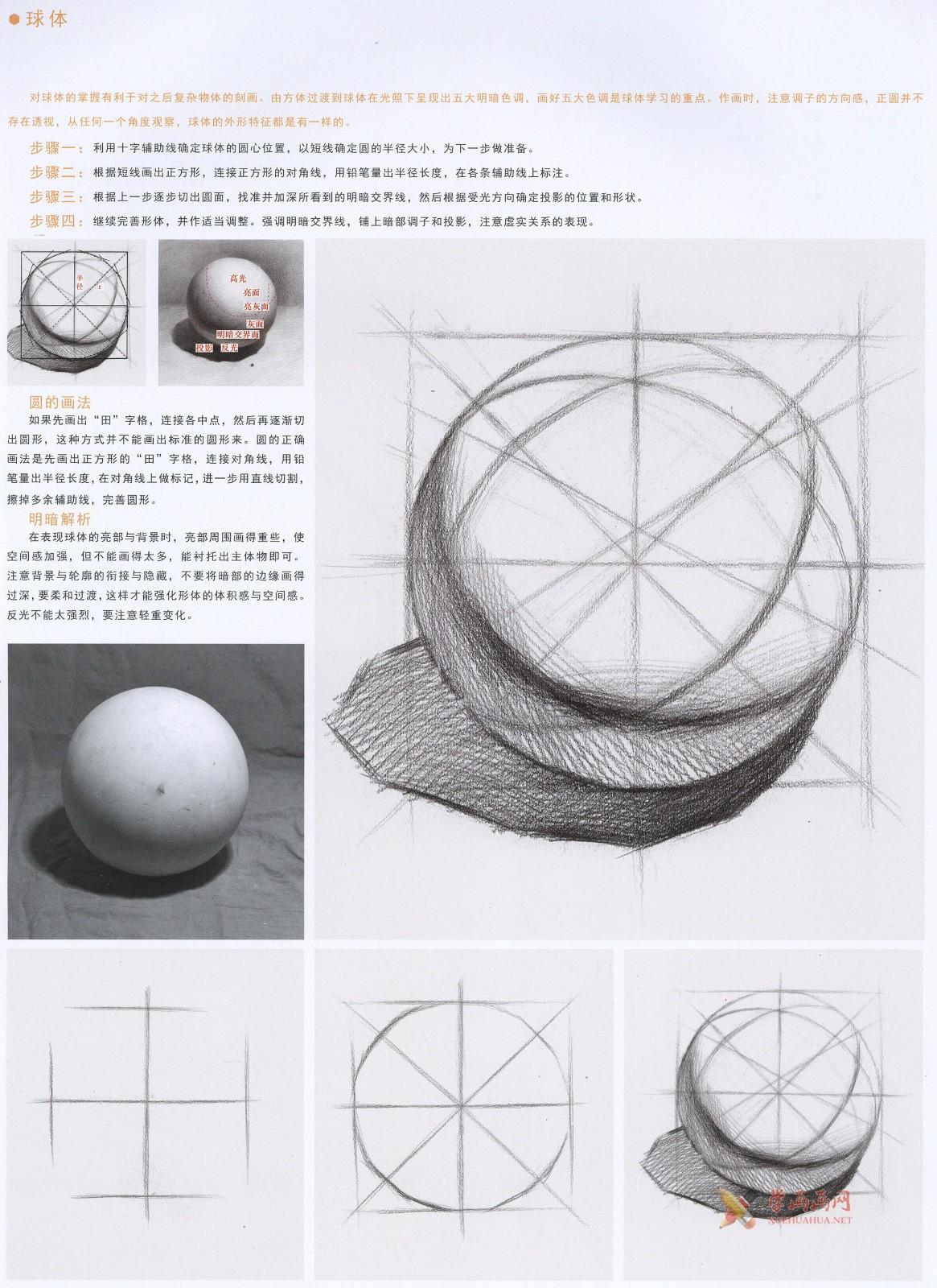 素描几何体_素描石膏球体的画法资料图片步骤解析(2)