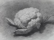 素描静物作品-蔬菜系列-《菜花》