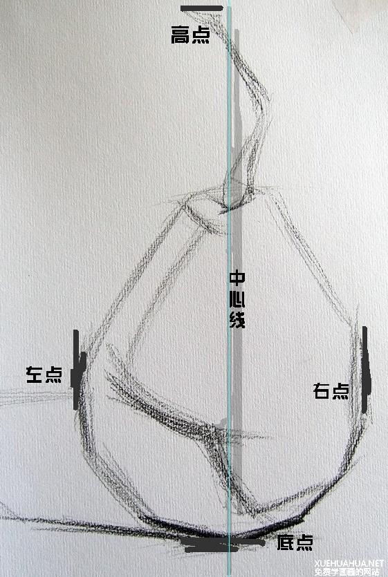 素描静物怎么打形
