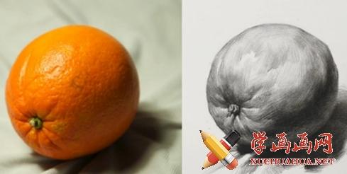 素描入门教程:单体静物《橙子的画法》