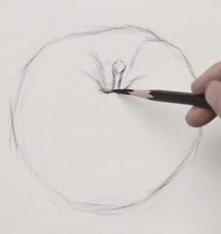 素描入门教程:怎么画苹果详细步骤